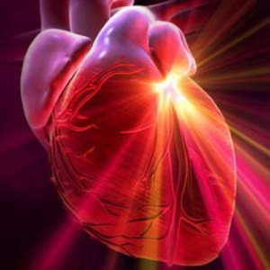 Консультация кардиолога, Olimpiyskiy